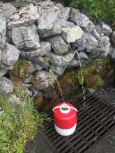 My favorite watering hole off of Mud Bay Road